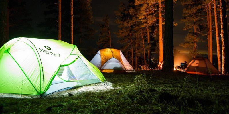 ВВоронежской области организуют палаточный детский лагерь засчет облбюджета