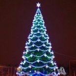 За чей счет праздник?: В мэрии Воронежа рассказали, кто оплатил покупку главной новогодней елки города