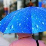 И это декабрь?!: В Воронеж пришло аномальное потепление