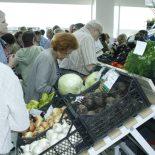 Обратная сторона урожая: Воронежские аграрии в 2016 г. заработали лишь на овощах и молоке?