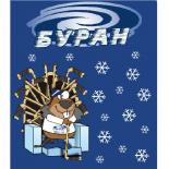 Ни льда, ни перспектив: ХК «Буран» (Воронеж) лишили полноценных тренировок