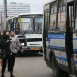 В погоне за клиентом: Общественный транспорт Воронежа теряет пассажиров и провоцирует ДТП