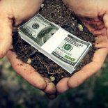Чернозем, как-никак: На продаже и сдаче в аренду невостребованной земли Воронежская область заработала более 400 млн руб.