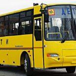 Все для детей: Федбюджет оплатит покупку для Воронежской области 27 школьных автобусов