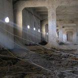 Вверх-вниз: Госжилинспекция и МЧС прошлись по чердакам и подвалам в Воронежской области
