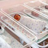 С прибавлением!: В Воронеже за новогодние праздники родились почти 300 младенцев