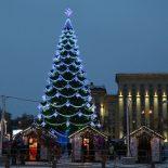 Скромненько: Стоимость установки новогодней ели в Воронеже упала до 1 млн руб.