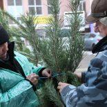 По примеру полиции: За нарушения при размещении елочных базаров накажут крупных чиновников мэрии Воронежа