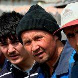 Без реабилитации: В Воронежской области с начала года в суд передано более 300 уголовных дел о незаконной миграции