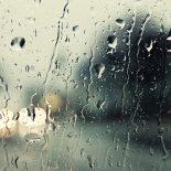 Дождливо и слякотно: Воронежцев ждет аномальная оттепель на Новый год