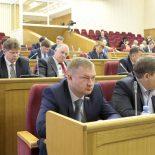 Учитесь планировать: Депутаты Воронежской облдумы опять скорректировали региональный бюджет