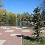 Не откладывая?: Власти Воронежа пообещали продолжить реконструкцию сквера «Чайка»