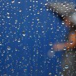 Дожди возвращаются: Синоптики рассказали о погоде в Воронеже в первые выходные зимы