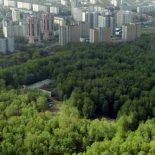 Минус Медовка: В Общественную палату внесено повторное ходатайство о создании зеленого пояса вокруг Воронежа
