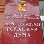 А там – хоть обкричитесь: Депутаты гордумы утвердили Положение о проведении конкурса для выбора мэра Воронежа