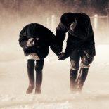 Ветер, ветер, ты могуч: Спасатели предупредили воронежцев об ухудшении погоды