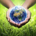 Свести планы: Федеральные экологи проведут круглый стол с коллегами из Воронежской области