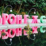 Все в сад!: Мэрия Воронежа опубликовала программу фестиваля «Город-Сад»