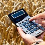 Вот это поддержали!: Воронежским аграриям «подкинут» более 1,5 млрд руб. из федбюджета