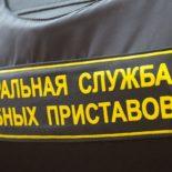 По заслугам: Воронежские приставы взыскали с алиментщиков порядка 140 млн руб.